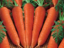 Cách trị mụn trứng cá tại nhà với cà rốt dễ ợt